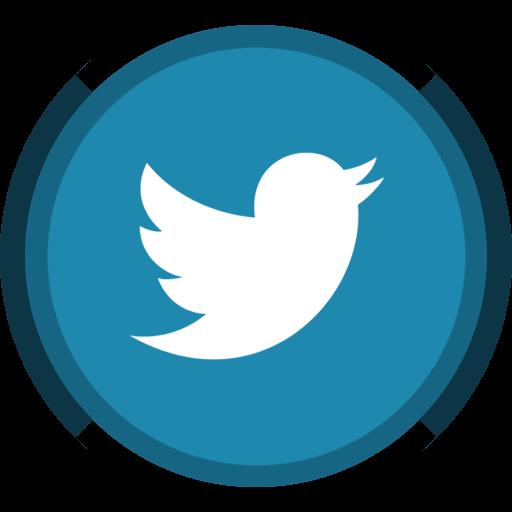 twitter - Чашка задней стойки 2110